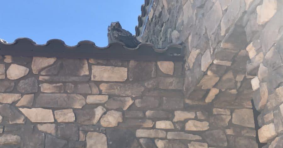 owls custom home cave creek bordeaux builders